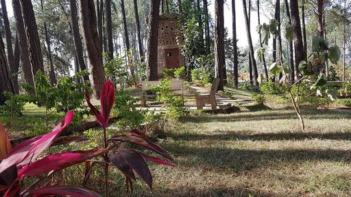 Ngaoundéré, le Bois de Mardock