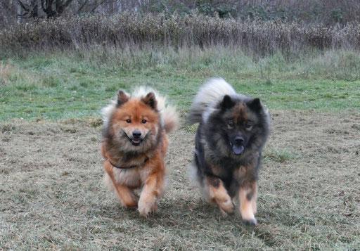 Ronja und Ylvi laufen ift Seite an Seite
