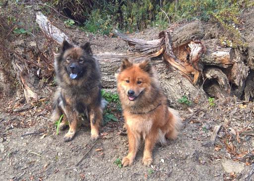 Ylvi und Ronja