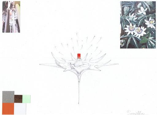 Planche d'intention Passiflore L.Raphaël Genève. Création Hervé Arnoul