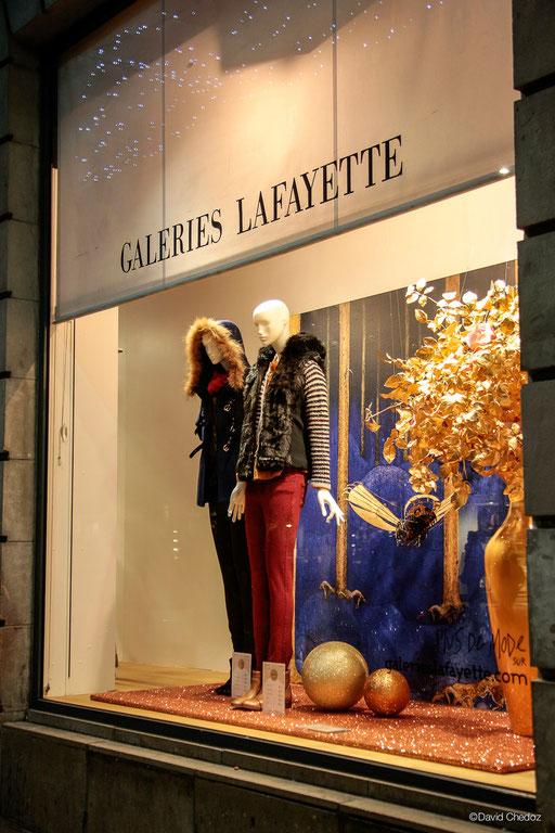 Photos David Chedoz pour Galeries Lafayette Dijon, Noel Fantastique 2.013 Hervé Arnoul Pour Galeries Lafayette.