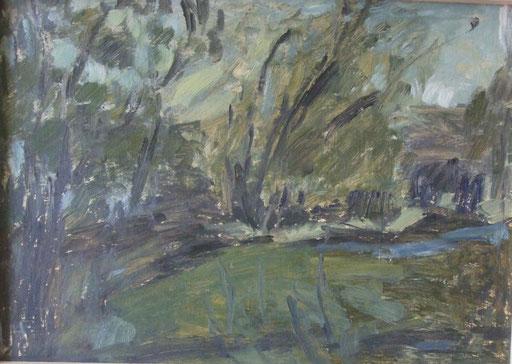 Aulandschaft, 35x50cm