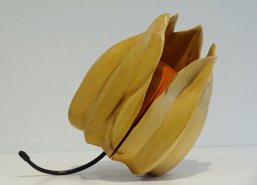 """AMOUR EN CAGE """"physalis"""" - buis 26 x 22 cm - 1500 €"""