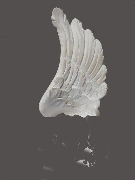 Aile d'ange