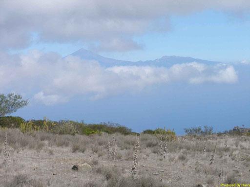 unterwegs  - der Teide auf Teneriffa