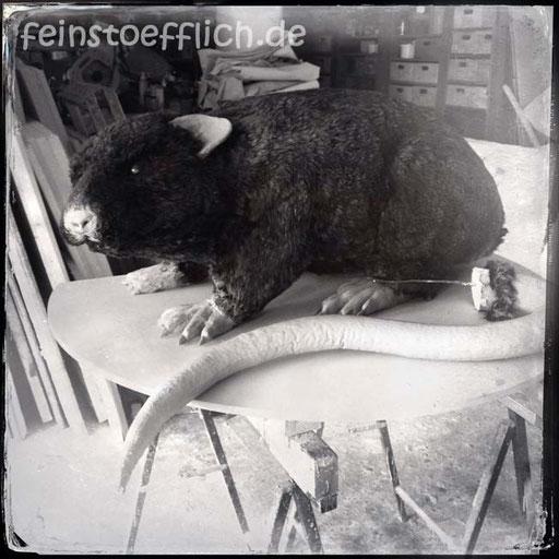 Ratte als Messeobjekt