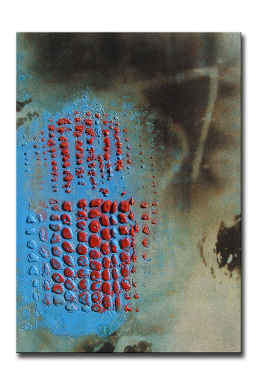 "Thomas Girbl ""black willow red"" 50x70cm 2009"