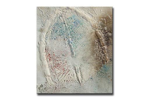 """Thomas Girbl """"diatom transparent"""" 38x44,5cm 2009"""