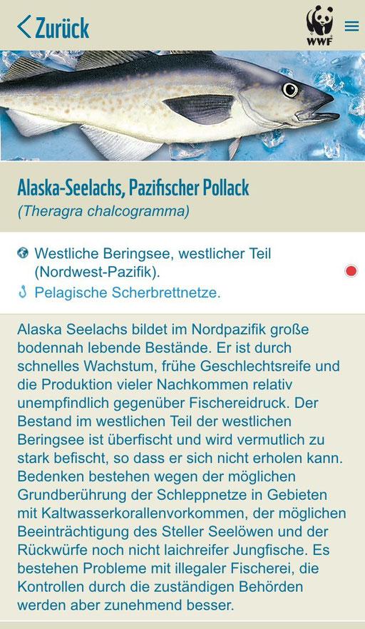 WWF Fischratgeber - mycleanlife