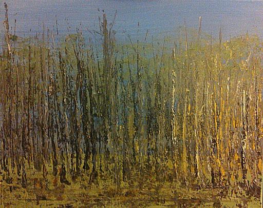 43. Bos, 40x50 cm, acryl op canvas