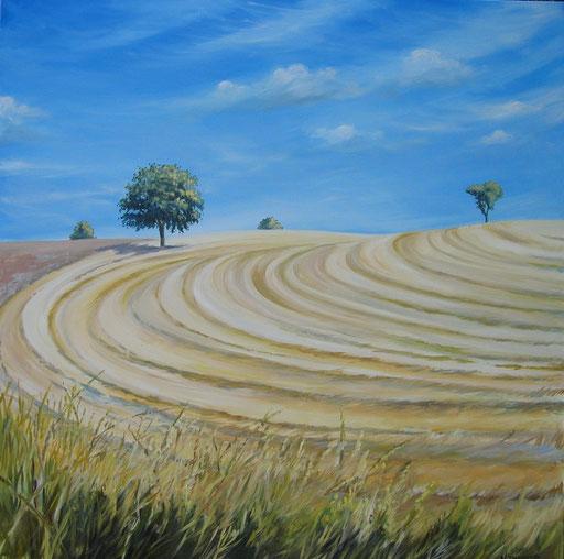 CAMPO DI GRANO, oil on canvas