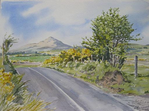 ROUNDWOOD ROAD, watercolour
