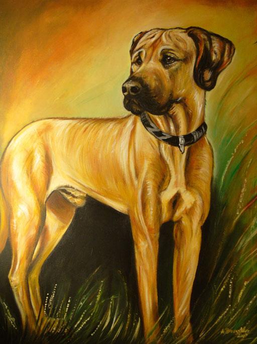 T 1 - Tierbilder Gemälde Tiere - Hundeportrait in Acryl
