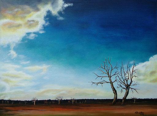 L 19 - Landschaftsbilder Gemälde - Namibia