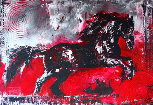 T 13 - Tierbilder Malerei Tiere - Pferd Hengst rot grau