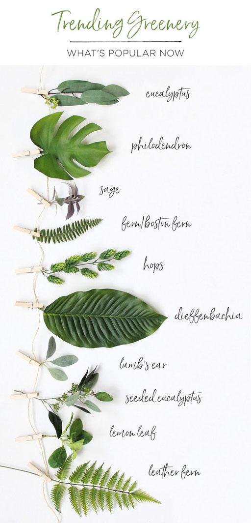 Blätter für Hochzeit