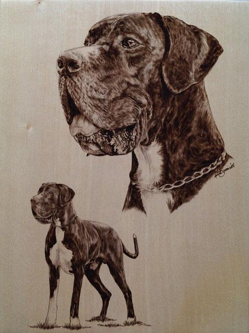 Portrait Deutsche Dogge in Brandmalerei auf Birkenholz
