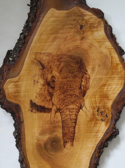 """""""Secret Elephant"""" Kirschholz"""