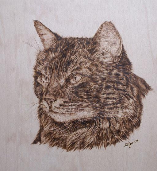 Portrait Katze in Brandmalerei