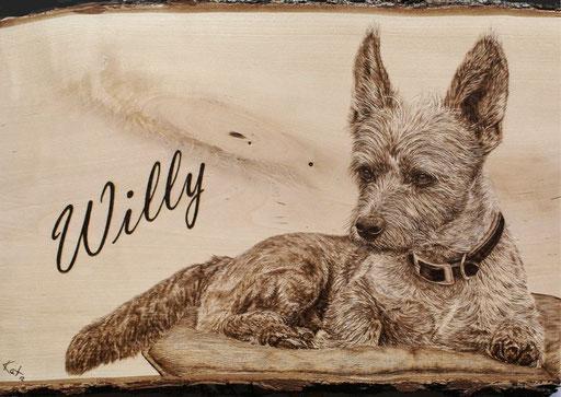 """Portrait """"Willy"""" Birkenholz, ca. 30x40cm"""