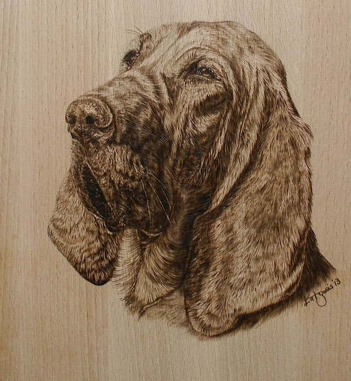 Hundeportrait Bloodhound, Buchenholz