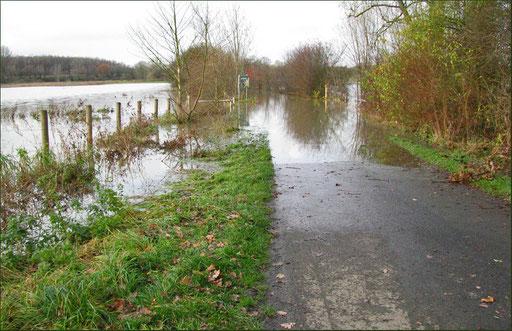 Der Spaziergang durch die Lippeauen fiel ins Wasser . Wegen des Dauerregens der letzten Tage sind weite Teile der Lippeauen überschwemmt