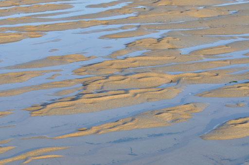 Baie du Mont : aquatique !