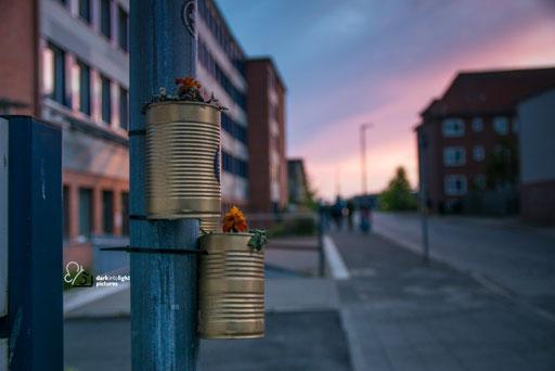 Platen un blomen in Kiel