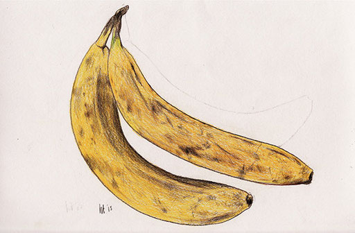 寄り添いバナナ A Couple of Bananas 379 mm x 270 mm color pencils 2013 Ⓒ Hanae Tanazawa