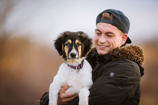 Tiershootings in Weilerswist und Erftstadt