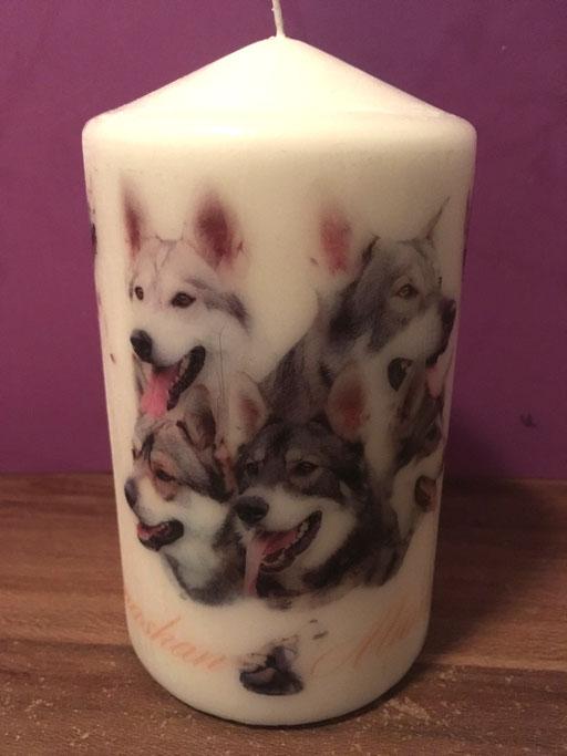 Kerze mit Hunderudel erstellt