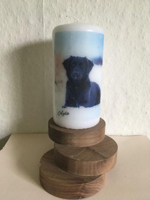 Kerze mit eigenem Hund erstellt