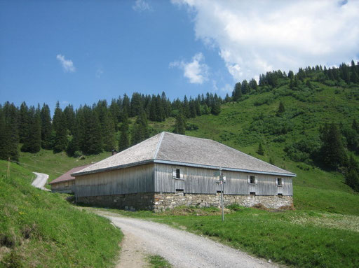 Gapfohl Alpe