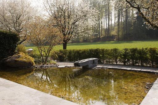 Neuanlage Teich - Durrer Gartenbau AG Herzogenbuchsee