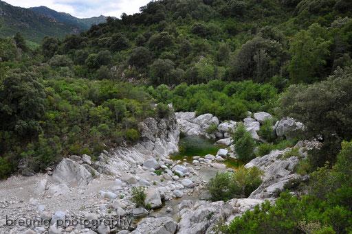 parco nazionale di orosei III
