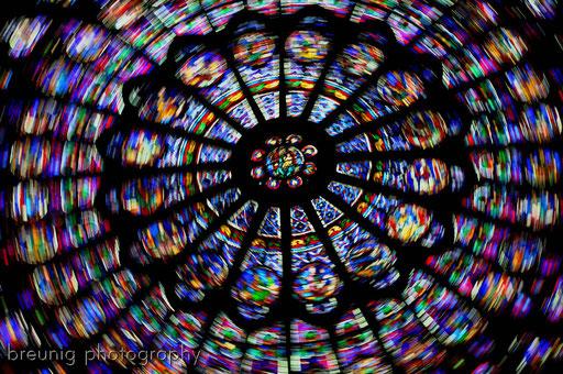 cathédrale notre-dame VII