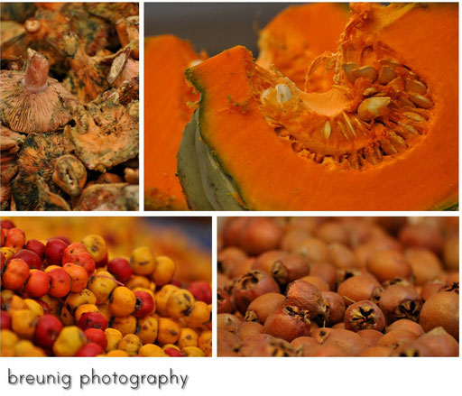 """""""fresh"""" mushrooms, pumpkin + some other things"""