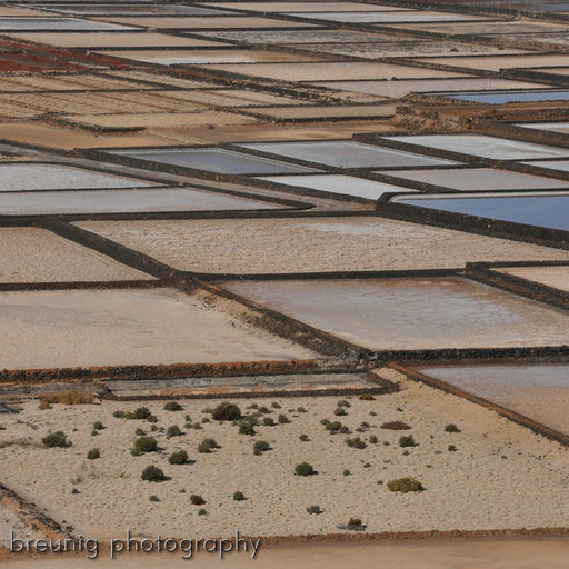 salinas de janubio: traditional salt lakes
