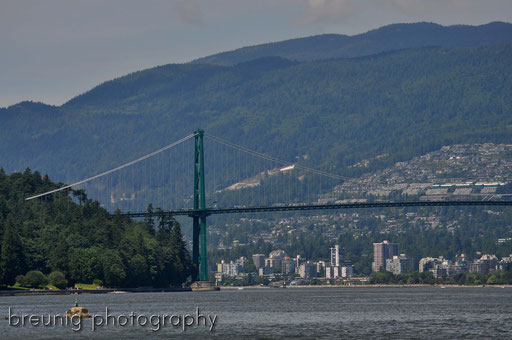 lions gate bridge II