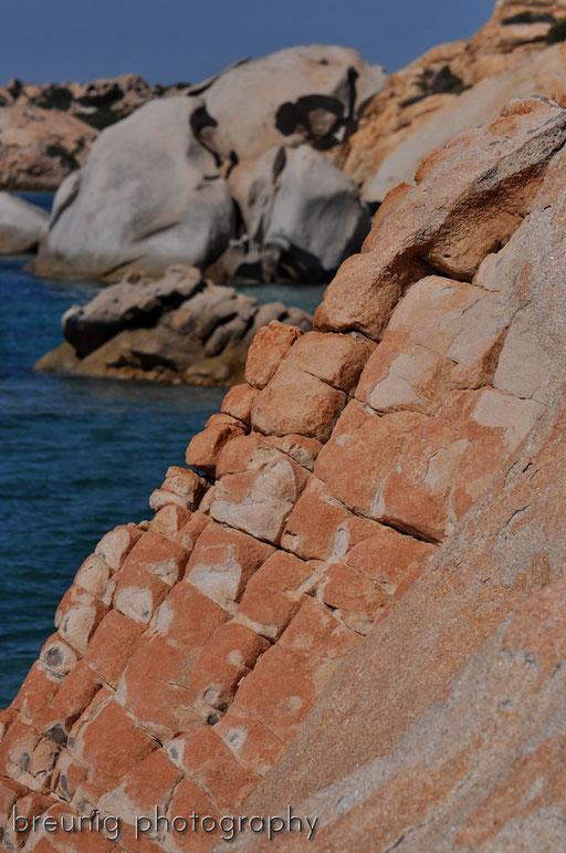 parco nazionale dell' arcipelago della maddalena IV