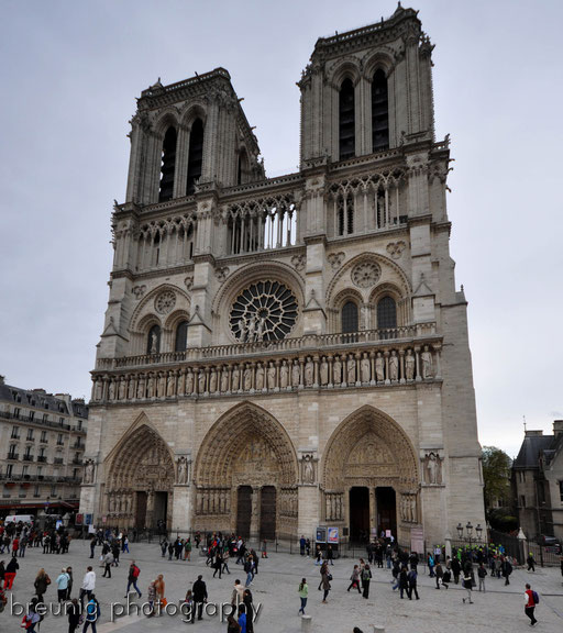 cathédrale notre-dame I