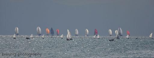 kadiköy regatta