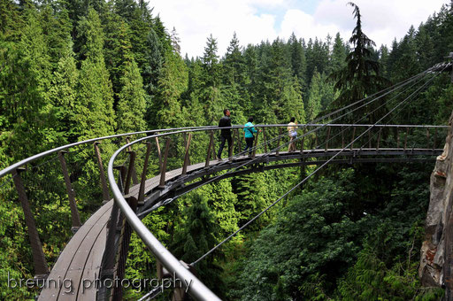 capilano cliff walk III