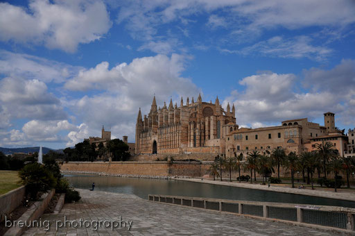catedral la seu palma de mallorca I