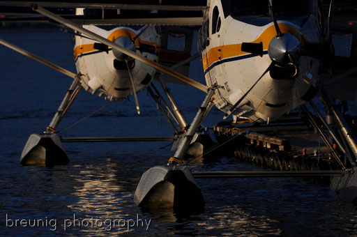 harbor air seaplane terminal III