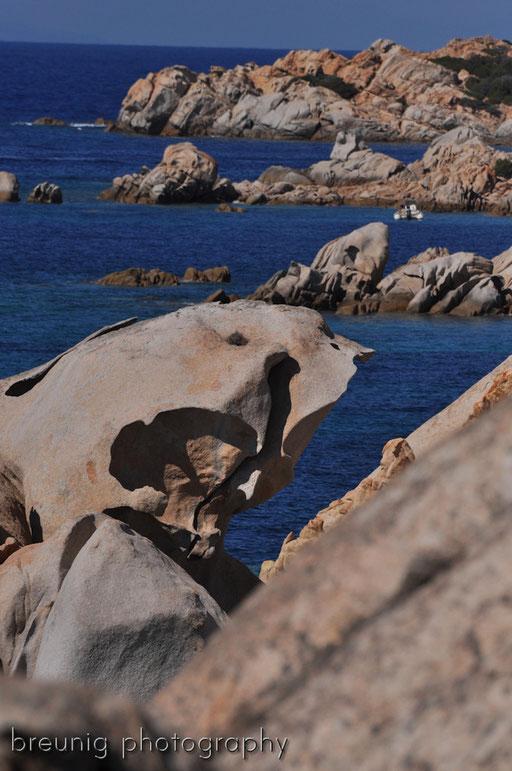parco nazionale dell' arcipelago della maddalena V