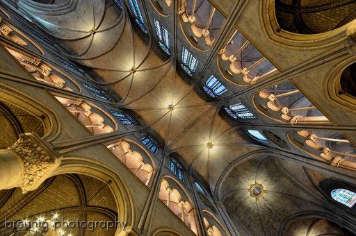 cathédrale notre-dame X