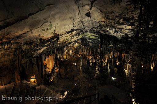 coves d'arta III