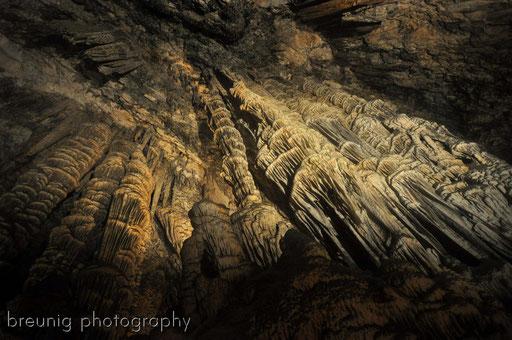 coves d'arta II