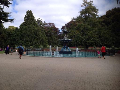 botanischer garten / botanic garden and